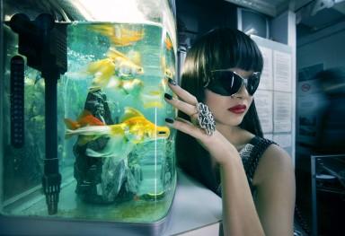 Les Dames de Hong-Kong 8