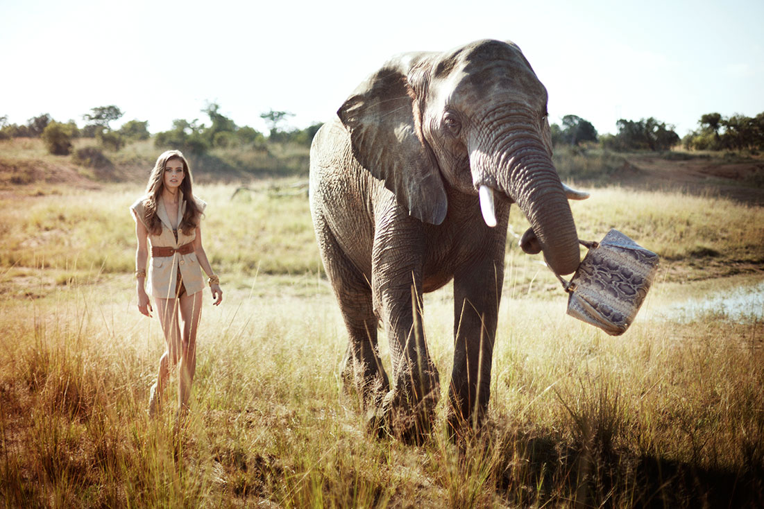 Safari_9